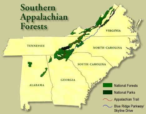 Smoky Mountains on map of nc mountains, map of east tn mountains, map of blue ridge region, map ny mountains, map of asia mountains, map of all mountains, map of north ga mountains, map of mountains in alabama, map of canada mountains,